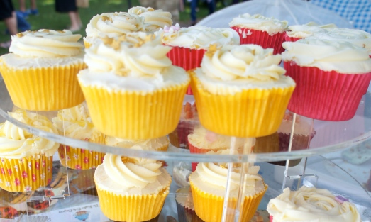 Yummy cup cakes